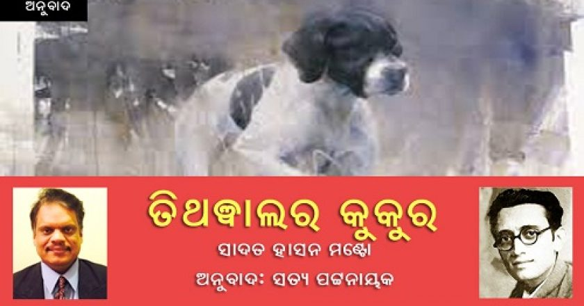 Dog-of-Tithwal