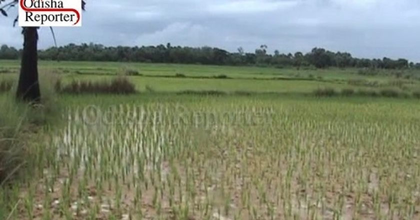Rain-Scarcity-for-Agricultural-Land