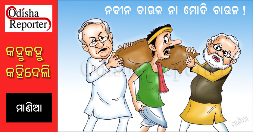 Odia-Comedy-Strip