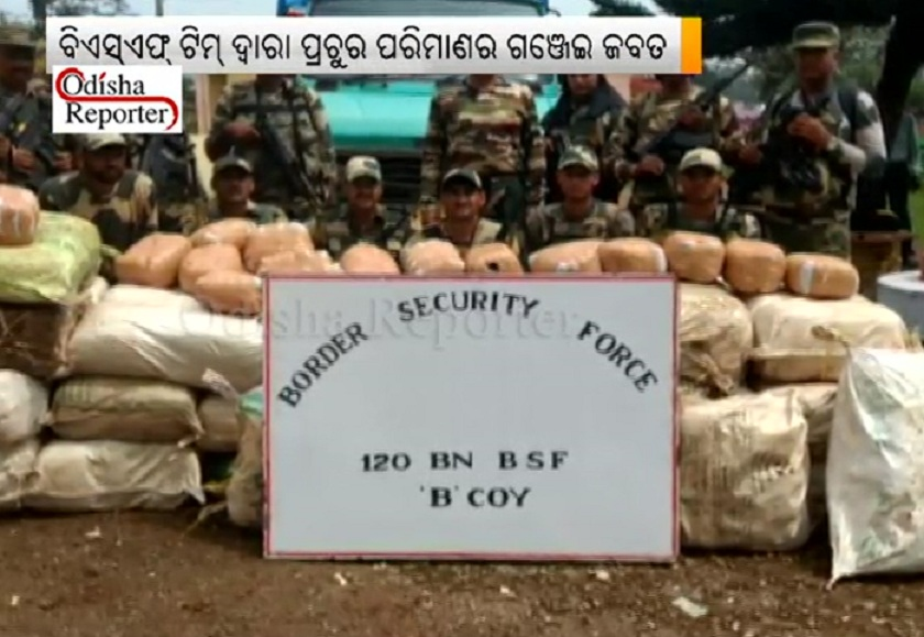 Ganja-seized-by-BSF-soldiers