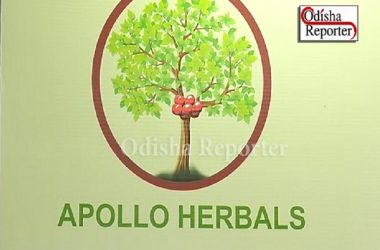apollo herbal