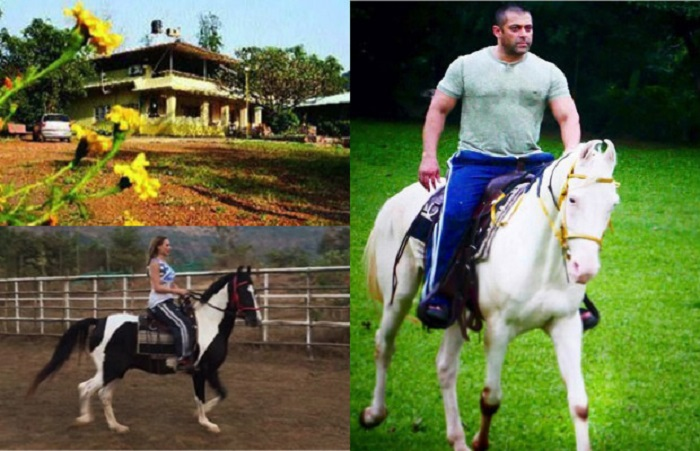 Salman-Khan-farm-Fi